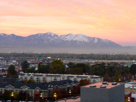 Salt Lake City Hotel View